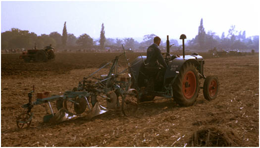 A nice period scene of a Fordson tractor
