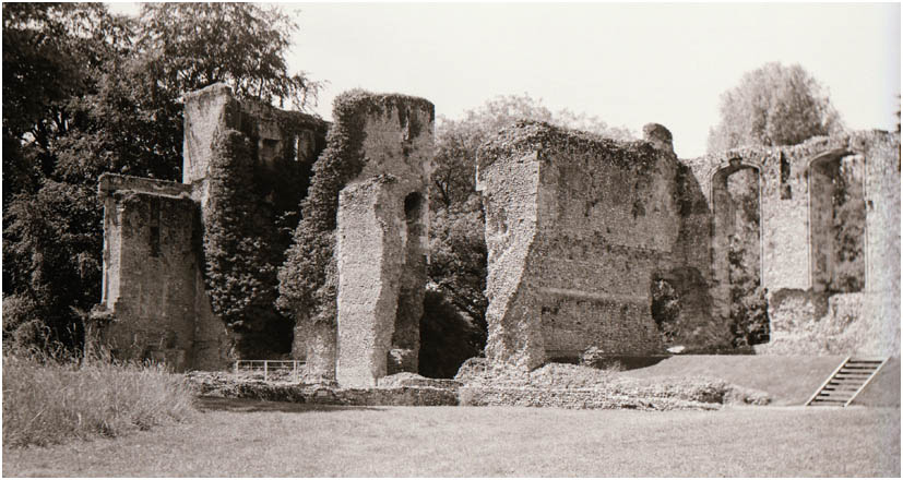 Bishop's Waltham Ruins
