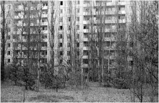 Pripyat returning to nature