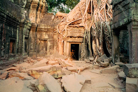One corner of the almost impossibly beautiful Ta Prohm         site