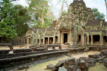 Ta Prohm is my favourite