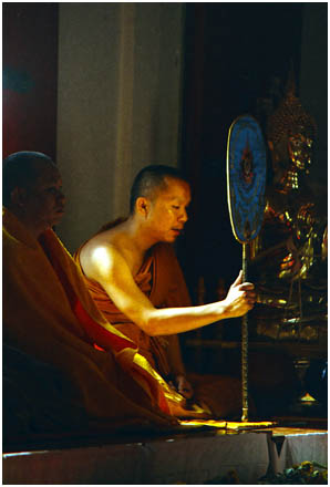Buddhist monk bathed by       sunlight reflecting<br>      off gold